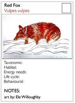 animalcard
